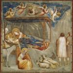 Natività Giotto, natale nella storia dell'arte, natività nell'arte