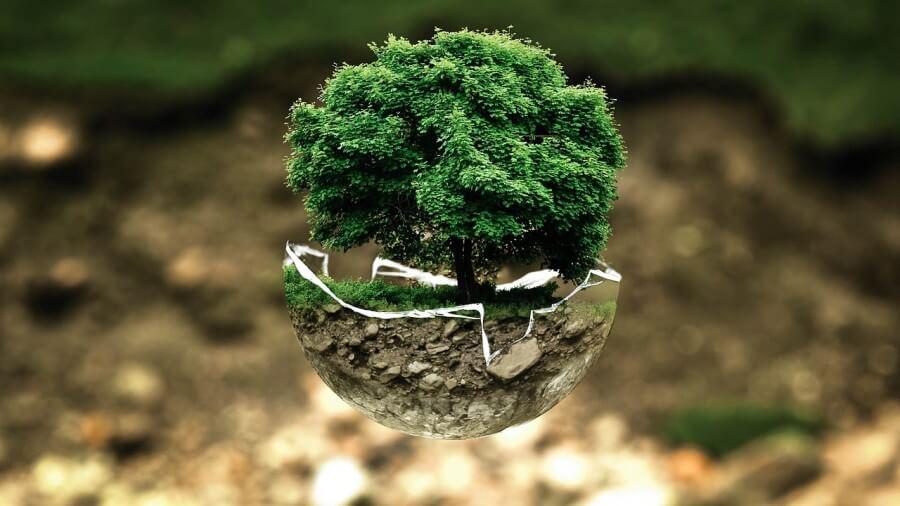 artisti land art proteggono la natura