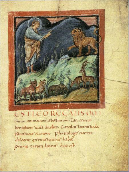 bestiari medievali spiegati ai bambini attività